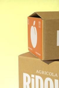 Midday Box - Profilo