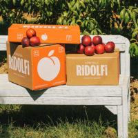 Packaging Nettarine - Agricola Ridolfi